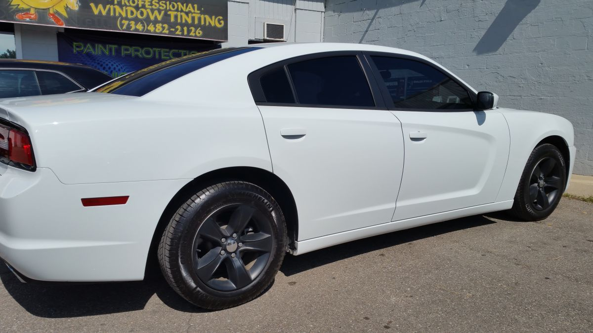 2015 charger 15 dp 5 back ss 3.jpg